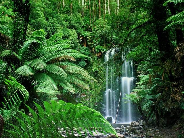 Hitta vattenfall i Australien via lågprisflyg