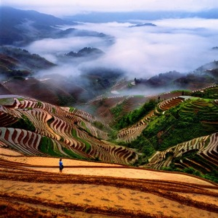 Lågprisflyg som tar dig inrikes i Kina och utrikes i Asien