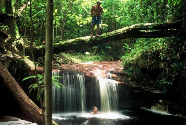 Amazonas bjuder på sagolik natur