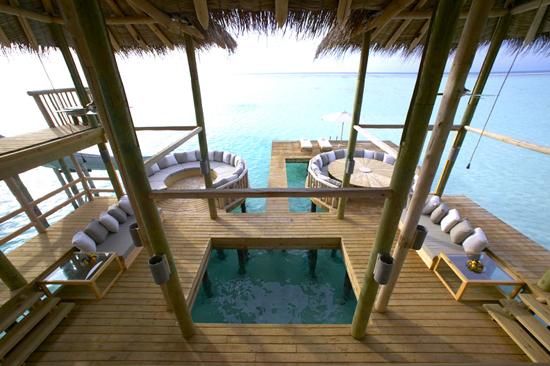 Underbar miljö på Maldiverna